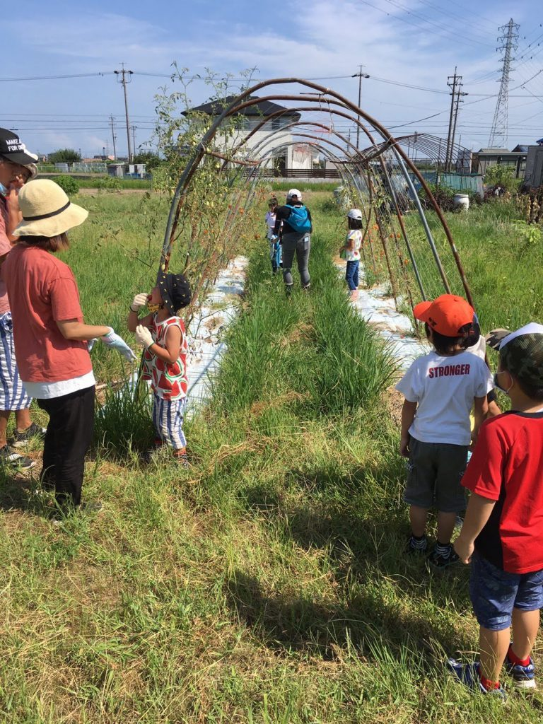 Kids visiting the fields