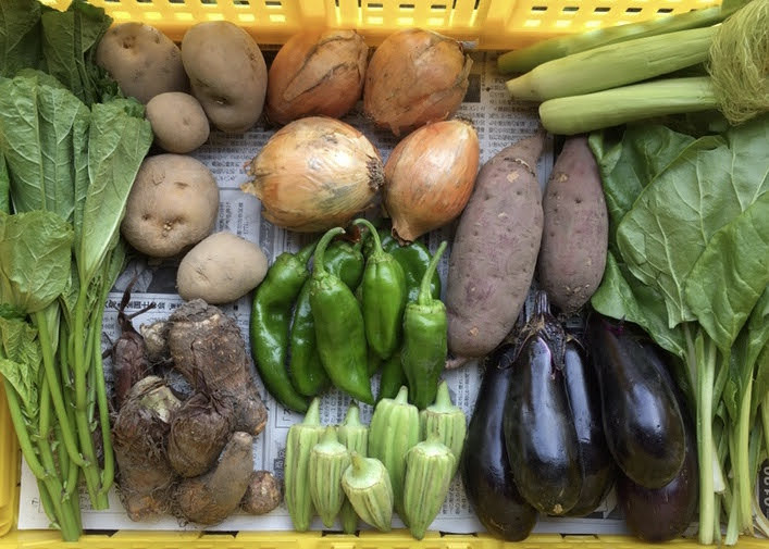 8 different sorts of vegetables in a box