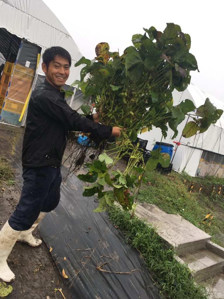 Japanese man holding freshly harvested greens in his arms